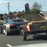 O Lamborghini das cabras!