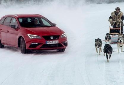 Quem é mais rápido: um SEAT com 300 cv ou um trenó com seis huskies?